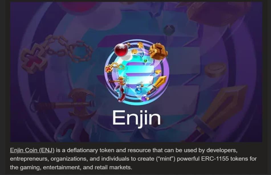 EnjSin defination
