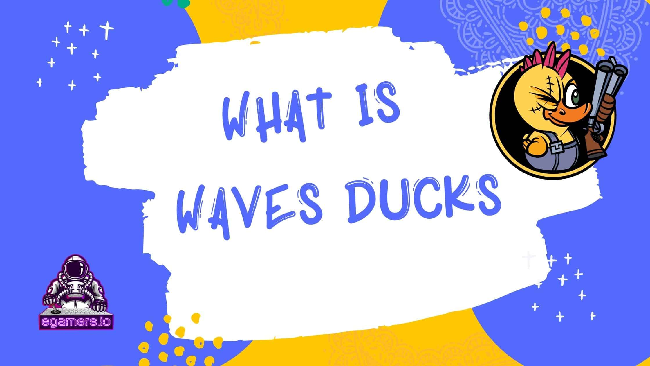 What is Waves Ducks